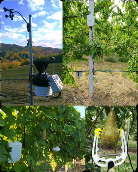 Il sistema di monitoraggio integrato iFarming unisce sensoristica avanzata a servizi di consulenza agronomica personalizzati, per un'efficiente gestione dell'azienda agricola.